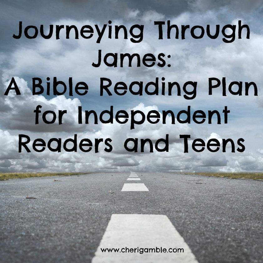 Journeying Through James Reading Plan Chapter Three