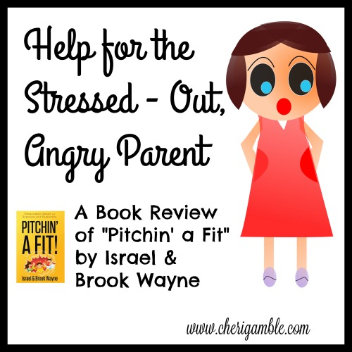 Help for the stressed out angry parent