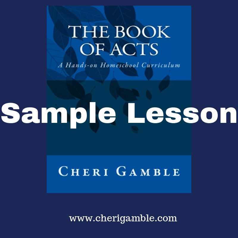 Sample Lesson